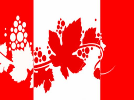 Canada, vino batte birra nel 2010/11
