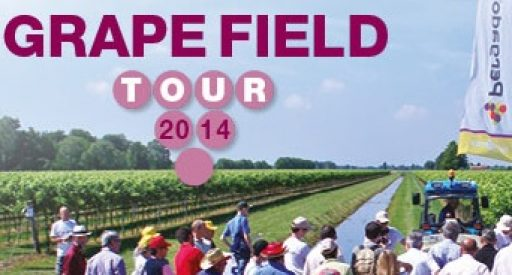 Grape field tour Syngenta fa tappa anche in Friuli