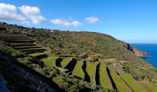 Passitaly 2016, promuovere le bellezza dell'isola di Pantelleria tutto l'anno