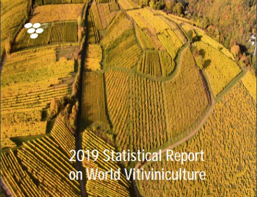 OIV: produzione mondiale 2018 stimata in 292 milioni di ettolitri (+17% vs 2017)